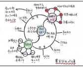 9张脑图:读懂雷军的商业生态运营逻辑